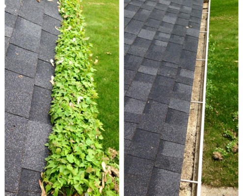 gutter cleaning before after